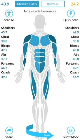 frontmuscle