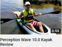 Perception Wave 10